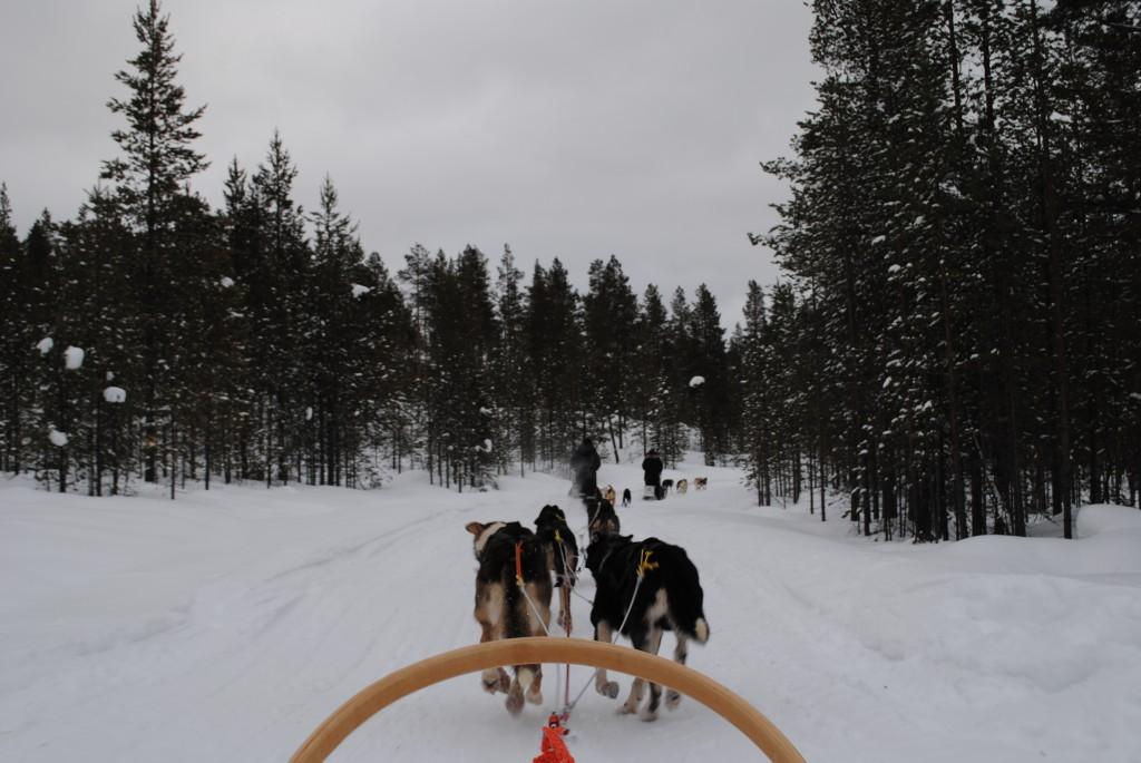 Lapland 2016 147